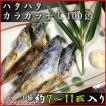 ハタハタ・カラカラ干し100g(約7〜11匹入り)<送料無料!>