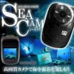 1200万画像 の スポーツカメラ 防水仕様で海中も撮影できる !! モニタリング搭載  衝撃にも強い KZ-DV1000 即納