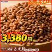米 雑穀 雑穀米 国産 赤米 3kg(500g x6袋) 送料無料 厳選 もち赤米 雑穀米本舗