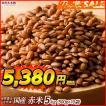 米 雑穀 雑穀米 国産 赤米 5kg(500g x10袋) 送料無料 厳選 もち赤米 雑穀米本舗