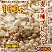 米 雑穀 麦 国産 麦5種ブレンド(丸麦/押麦/はだか麦/もち麦/はと麦) 100g 送料無料 雑穀米本舗