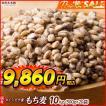 米 雑穀 麦 国産 もち麦(中粒) 10kg(500g x20袋) 送料無料 高品質 厳選 ダイシモチ ダイエット 雑穀米本舗