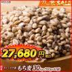 米 雑穀 麦 国産 もち麦(中粒) 30kg(500g x60袋) 送料無料 高品質 厳選 ダイシモチ 腸内環境 脂肪激減 ダイエット 雑穀米本舗