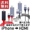 iPhone → HDMI 出力アダプター iPad Lightning ライ...