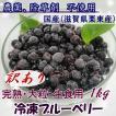 【2019年度分】訳あり 冷凍ブルーベリー 1kg 無農薬栽培 国産ブルーベリー ラビット・アイ クール便 冷凍