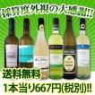 ワインセット 白セット 送料無料 第11弾 1本当たり667円(税別) 超破格白ワイン6本セット wine set
