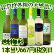 ワインセット その他ワインセット 送料無料 第8弾 1本当たり667円(税別) 採算度外視 京橋ワイン厳選の大感謝の超破格6本セット wine