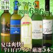 ワインセット 超限定スペシャル 夏は爽快『辛口』厳選5本セット wine