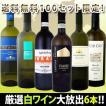 ワインセット その他ワインセット イタリア大満喫厳選極旨6本セット 送料無料 100セット限定 wine
