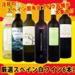 ワインセット スペインおうちバル6本セット6580円 wine