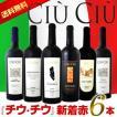 ワインセット その他ワインセット 送料無料 大人気イタリアン チウ・チウ 新着6本セット wine