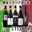 ワインセット その他ワインセット 送料無料 冬の定番 極旨イタリアワイン 5本セット wine