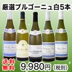 ワインセット 5本全てブルゴーニュ 特大感謝の厳選ブルゴーニュ大放出5本セット wine