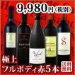 ワインセット その他ワインセット 送料無料 シーズン到来 濃厚好き必見 大満足のフルボディ5本セット wine