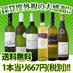ワインセット なんと1本あたり667円(税別) 採算度外視の大感謝の6本セット wine
