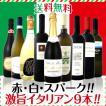 ワインセット その他ワインセット 送料無料 赤・白・スパーク 厳選激旨揃い イタリア大満喫9本セット wine