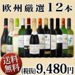 ワインセット 超特大感謝 スタッフ厳選 の激得12本9,480円セット ワインクーラーバック2個のオマケ付き wine