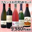 ワインセット その他ワインセット 送料無料 100セット限定 お花見はこれで決まり 厳選フランスワイン5本セット wine