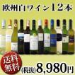 ワインセット その他ワインセット 送料無料 1本あたり749円(税別) 採算度外視の大感謝 厳選12本セット wine