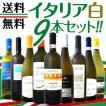 ワインセット その他ワインセット 送料無料 バラエティ豊かな個性を大満喫 激旨イタリア9本セット wine