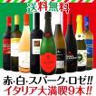 ワインセット 赤・白・スパーク・ロゼを厳選セレクト!!イタリア大満喫9本セット!! wine set