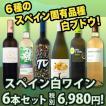 ワインセット 白セット 白ワイン 送料無料スペインおうちバル6本セット! wine set