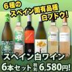 白ワインセット 送料無料スペインおうちバル6本セット! wine set