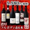 ワインセット 赤セット 赤ワイン 送料無料 濃厚好き必見大満足のフルボディ6本セット wine set