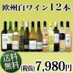 ワインセット 白セット 白ワイン 送料無料 1本あたり665円税別 採算度外視の大感謝 厳選白ワイン12本セット wine set