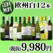 ワインセット 第7弾 超特大感謝 スタッフ厳選 の激得12本9,980円(税別)セット wine