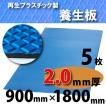 ダイヤボード(RPボード)【2mm厚・5枚】青〔005000〕1800mm×900mm≪送料無料≫