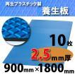 ダイヤボード(RPボード)【2.5mm厚・10枚】青〔005001〕1800mm×900mm≪送料無料≫