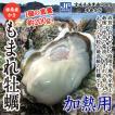 牡蠣 唐桑産殻付き もまれ牡蠣 10枚入 大粒 かき 加熱用 送料無料(宮城県漁業協同組合唐桑支所)