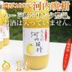 愛媛産河内晩柑ジュース1本 ストレート果汁1000ml