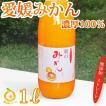 愛媛産みかんジュース1本 ストレート果汁1000ml