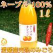 愛媛産ネーブル ストレート果汁1000ml