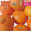 愛媛産 訳あり甘平3kg(かんぺい)(サイズS~4L込み)深い味わいとプチプチ食感