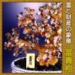 富と財産の象徴 富貴樹 K9502