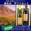 カーサ・アンティグア 赤白2本セット ワイン お中元お歳暮ワインギフト