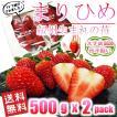 いちご まりひめ 和歌山オリジナル品種 大きめサイズ・形不揃い 500g(約8粒) x 2パック 送料無料 TVでも紹介された幻のイチゴ 秀品 イチゴ 苺