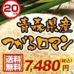 29年度 青森県産つがるロマン30kg 送料無料
