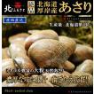 北海道厚岸産 特大あさり 1kg 【産地直送】 アサリ 貝
