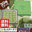 ロイズ ROYCE 生チョコレート (抹茶) 30箱入1ケース