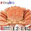 かに 専門店のカニ 毛ガニ 北海道産 超特大サイズ 1.2-1.4kg前後 1尾入 毛がに 毛蟹