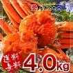 ちょっと訳あり?!【業務用】北海道当店加工 本ずわいがに姿4kg 5~7尾入 送料無料 ズワイガニ ズワイ蟹