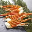 カニ ズワイガニ ずわいがに 脚 ボイル お歳暮 冷凍 お取り寄せ 700g(3〜4肩)