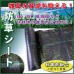 大型商品B/防草シート 2m×50m ブラック 草よけ・防草に!雑草防止被覆。