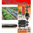 マルチシート 黒 穴あき 厚さ0.02mm 巾135cm×長さ50m 野菜栽培では欠かせない菜園用のマルチシート