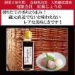 醤油 島根 紅梅しょうゆ 生揚げ醤油 レア 限定生産 再仕込み醤油
