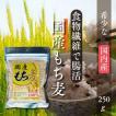 もち麦 国産100% βグルカン含有 大人気! 雑穀米 麦ごはんで毎日健康 250g